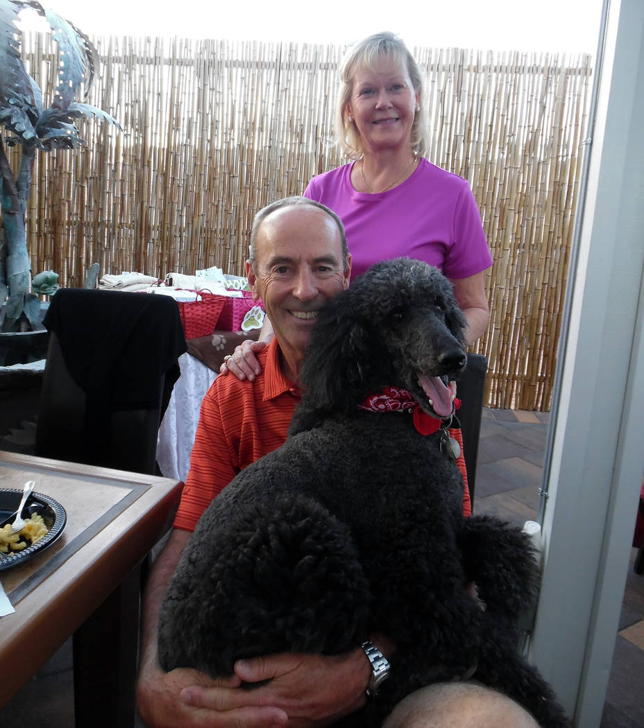 Hali Bernstein Saylor/Boulder City Review Ware and Becky Flora brought their 9-year-old standard poodle Baker to Saturday's Bow Wow Bingo fundraiser at Chilly Jilly'z to support See Spot Run.