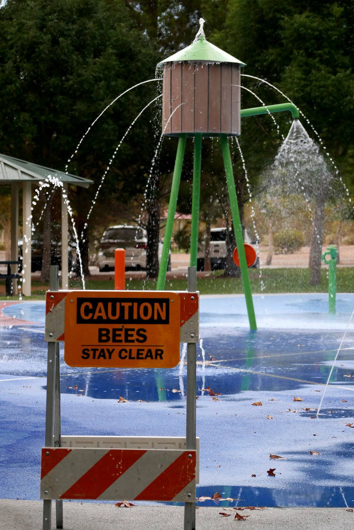 Paul Luisi/Boulder City Review A sign warns visitors to Veterans' Memorial Park about bees in the area on Monday.
