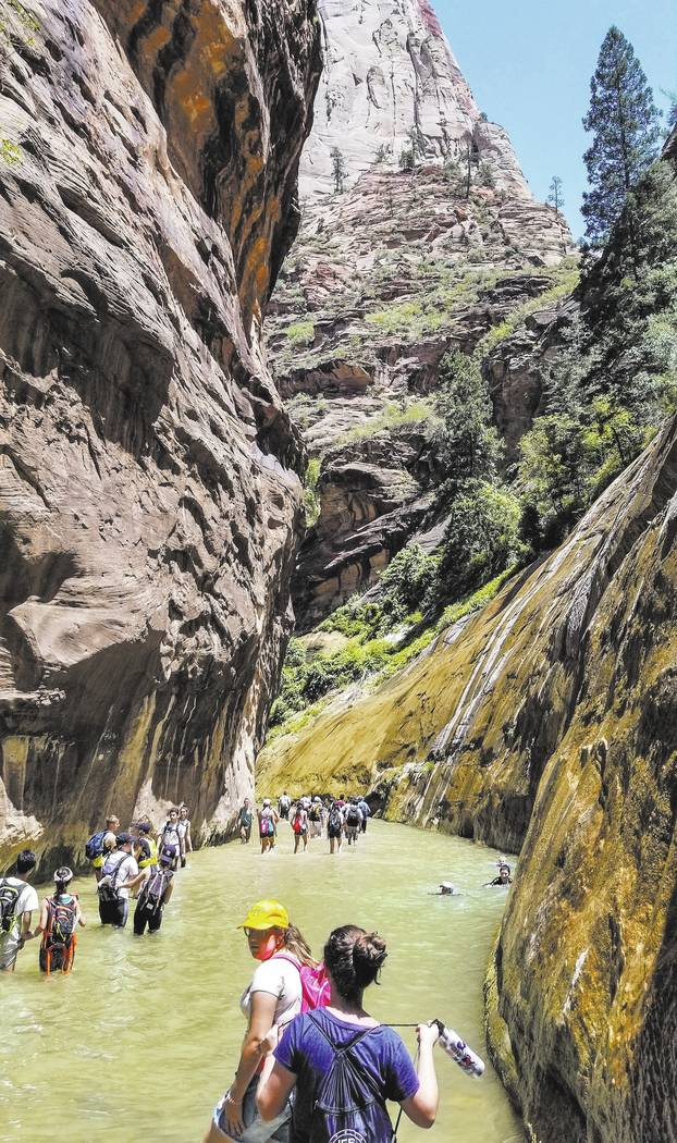 Zion National Park visitors walk along The Narrows, a river hike through the Virgin River, at Zion National Park in Utah on Friday, July 14, 2017.  Patrick Connolly Las Vegas Review-Journal @PConnPie