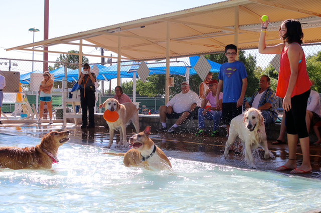 File Julia Tregnan, right, and her brother Sean brought their dog Molly, who is between them, to the 2015 Soggy Doggy at the Boulder City Pool. This year's event will be held Sept. 9.