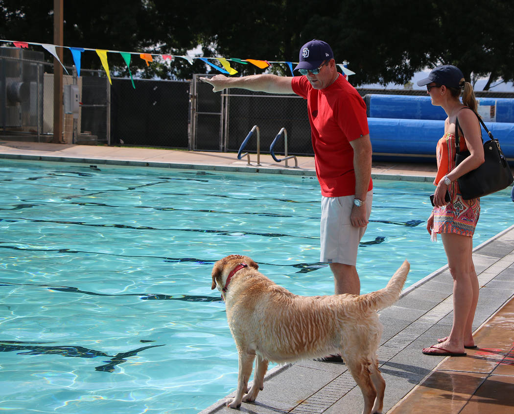 Bryce Rogers/Boulder City Review Ed Cave gives his dog Piper some direction about fetching a toy he threw into the pool during Boulder City Pool's annual Soggy Doggy event on Saturday while Laura  ...