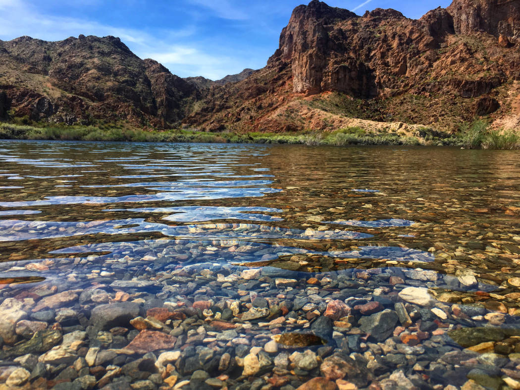 Las Vegas Review-Journal The forecasted flow for the Colorado River, seen near Willow Beach, Arizona, this coming year is bleak, as rain and snowfall in areas that feed the river have fallen below ...