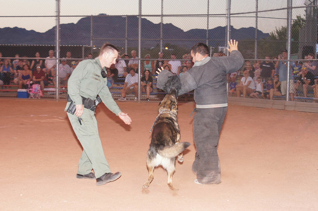 File photo A demonstration by the city's police K-9 Unit will be among the activities planned for Tuesday's National Night Out. Festivities are scheduled from 6:30-9:30 p.m. Tuesday at Veterans' ...