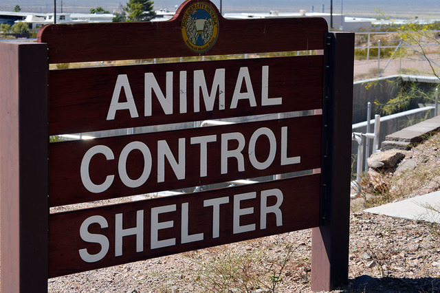 The Boulder City Animal Shelter is no longer associated with the local charity Boulder City Paws 'n' Claws. Max Lancaster/ Boulder City Review