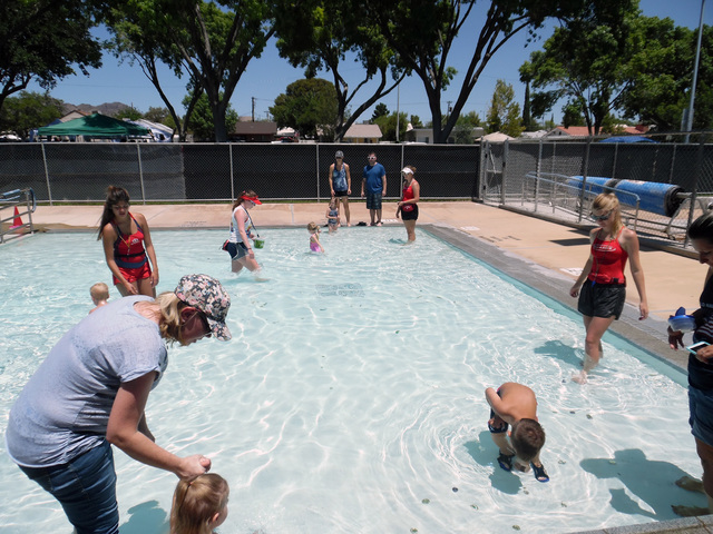 Young children scramble through the wading pool during the coin toss Monday at the Boulder City Municipal Pool during the 68th annual Damboree celebration on July 4, 2016. Hunter Terry/Boulder Cit ...