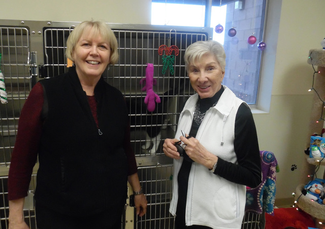 Hunter Terry/Boulder City Review Margie Reumamn, left, from Las Vegas and Jo Clow of Boulder City are regulars on the American Association of University Women's annual Home Tour. They said they lo ...
