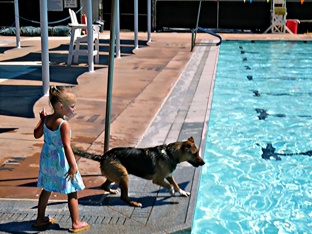 Hunter Terry/Boulder City Review Harper Dosch played fetch with Charlie, one of the more than two dozen dogs at the Boulder City Pool's second annual Soggy Doggy pool party Saturday.