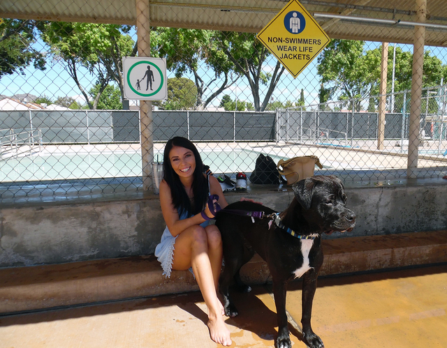 Hunter Terry/Boulder City Review Jonnie Kawcak brought her dog Brody to the Boulder City Pool's second annual Soggy Doggy pool party Saturday, and by the time the morning ended he was splashing ar ...