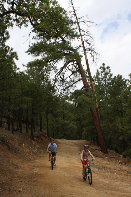 Photo courtesy Deborah Wall There are about 10 miles of trails at Hualapai Mountain Park, just outside of Kingman, Arizona.