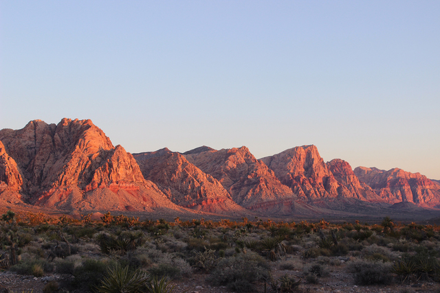 Photo courtesy Deborah Wall Red Rock Canyon National Conservation Area at sunrise.