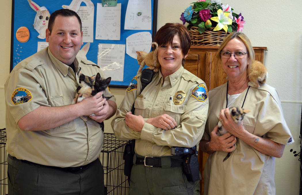 Celia Shortt Goodyear/Boulder City Review Boulder City Animal Control Supervisor Ann Inabnitt, center, has worked to make the animal shelter a no-kill facility along with the help of her staff, an ...