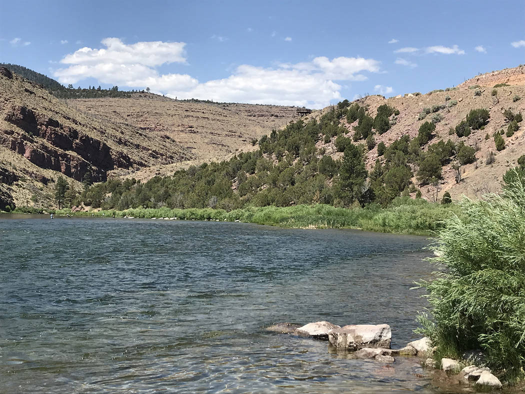 Deborah Wall The Green River below the Flaming Gorge Dam in northern Utah is a fly-fisherman's paradise.