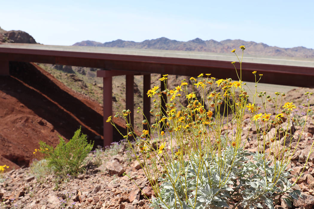 Regional Transportation Commission of Southern Nevada The 15-mile stretch of Interstate 11 that bypasses Boulder City, which opens Aug. 9, features 17 bridges.