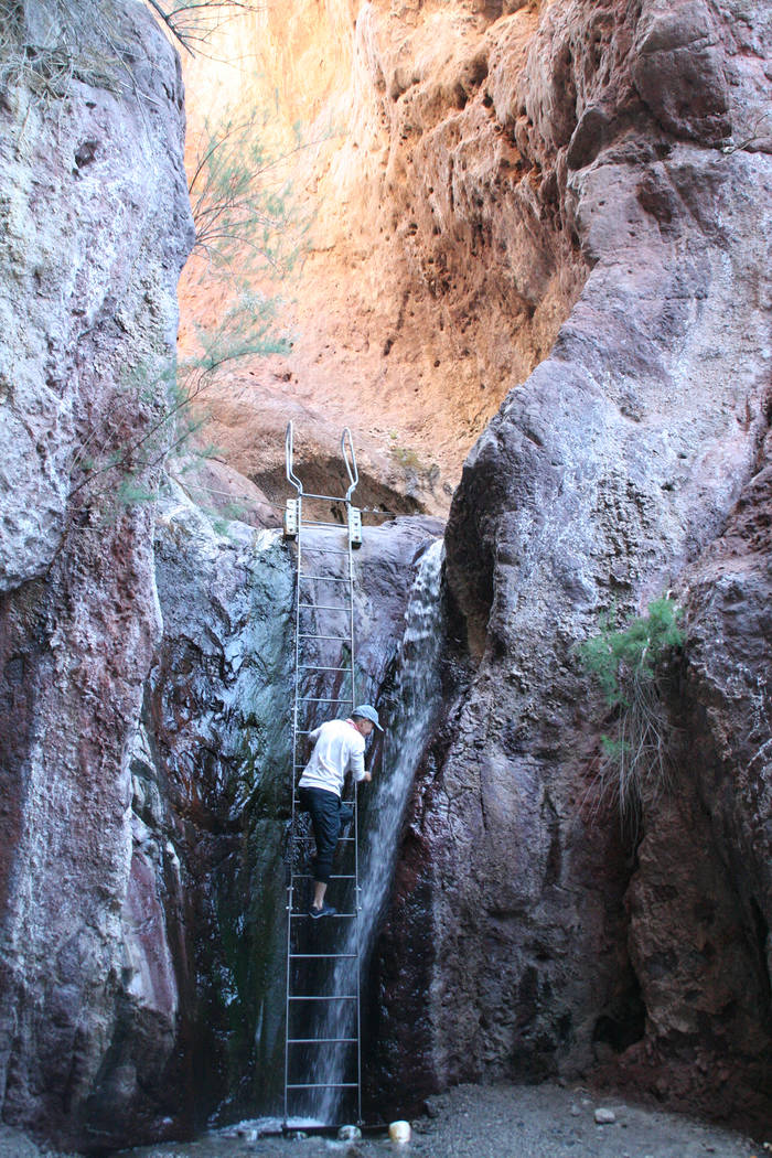 Deborah Wall Just a few minutes walk from the Colorado River you will find a ladder to access the Arizona Hot Springs.
