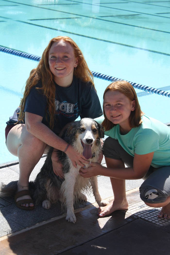 Cheree Brennan/Boulder City Parks and Recreation Department Isabella and Savannah Fecteau brought their Australian shepherd/border collie named Thunder to Saturday's Soggy Doggy pool pawty for dog ...
