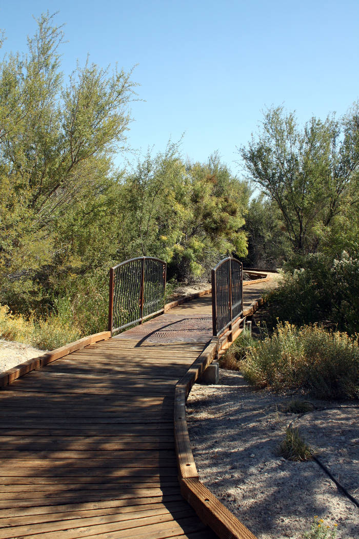 Deborah Wall Boardwalks can be found throughout Ash Meadows National Wildlife Refuge.