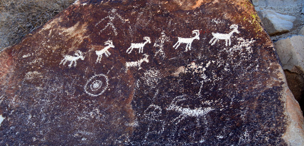 (Deborah Wall) Many of the petroglyph panels in Grapevine Canyon within Lake Mead National Recreation Area feature abstract designs and symbols while others depict recognizable figures like bighor ...