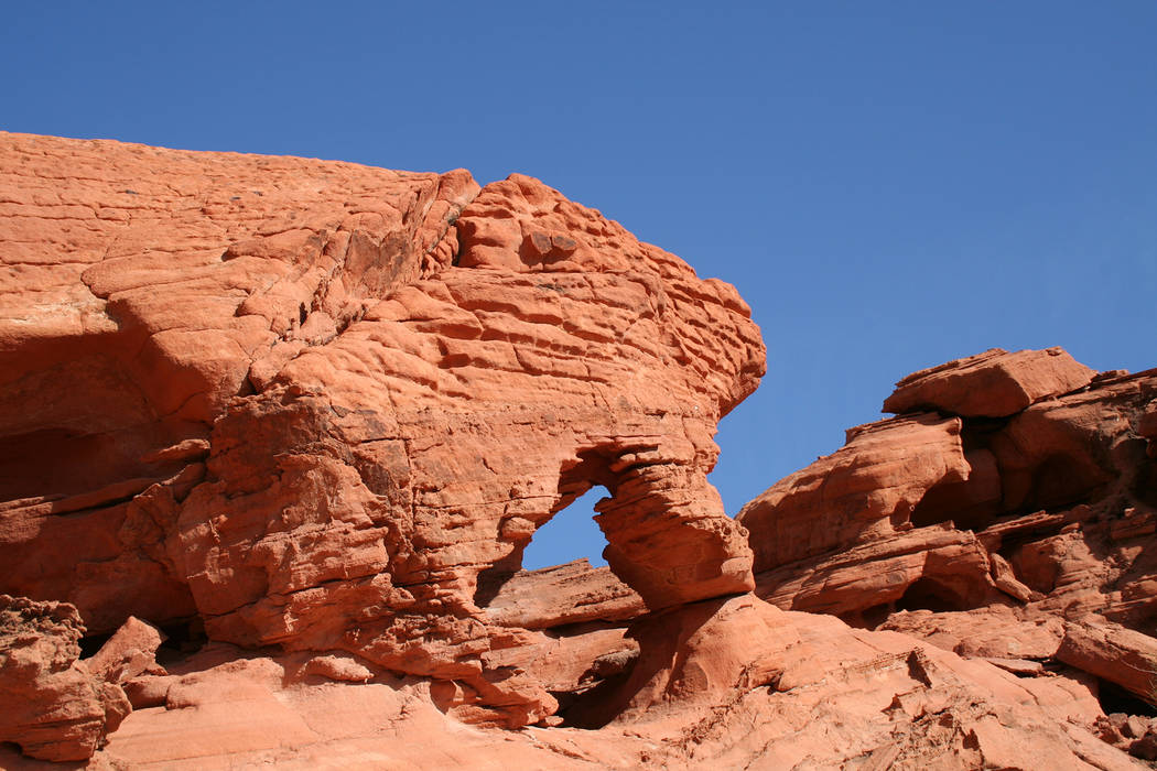 (Deborah Wall) Over time, wind and blowing sand can create holes, windows, overhangs and arches in the sandstone, such as those seen at Bowl of Fire at Lake Mead National Recreation Area.