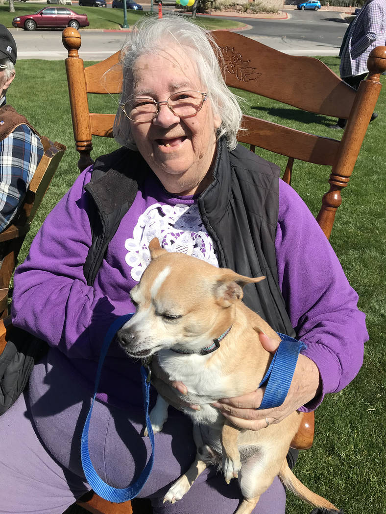 (Hali Bernstein Saylor/Boulder City Review) Caroline Martin and her dog Paco were enjoying the sunshine and entertainment at the Rock Roll & Stroll fundraiser for the Senior Center of Boulder ...
