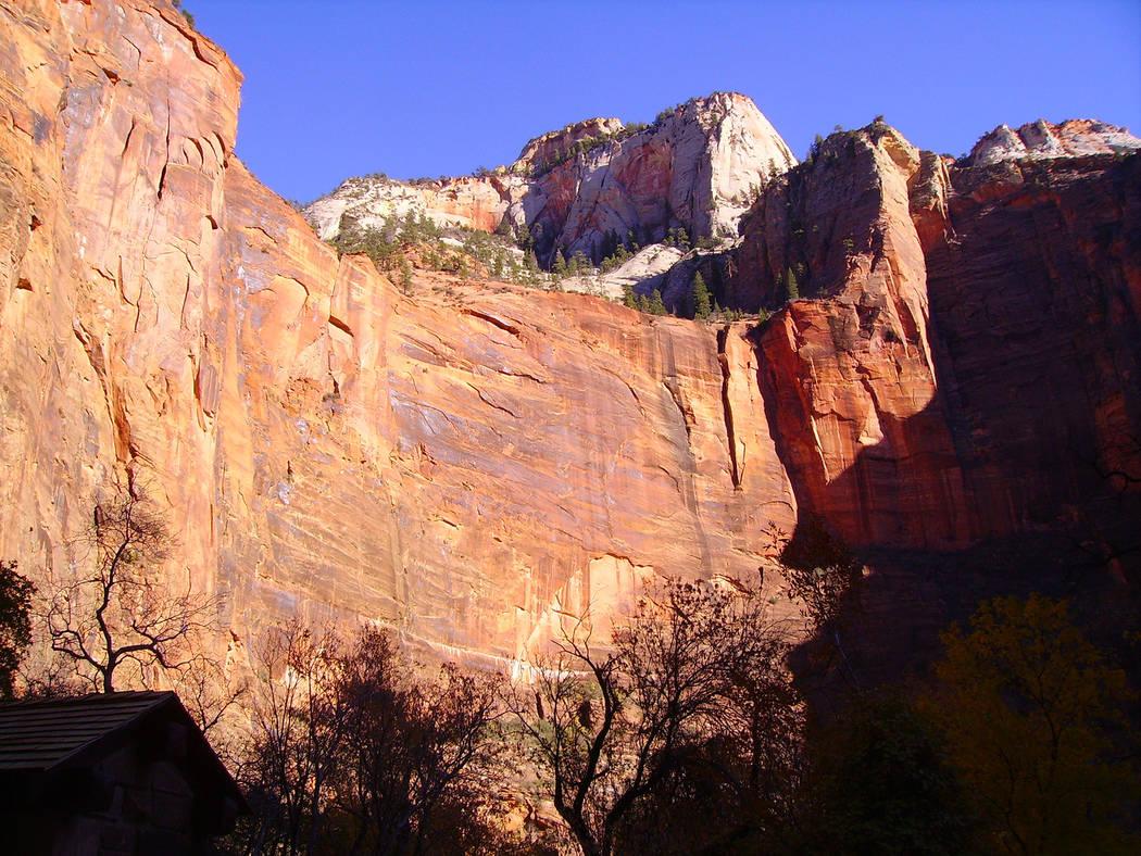 (Deborah Wall) High sandstone walls and monoliths provide a colorful backdrop along Zion Canyon ...