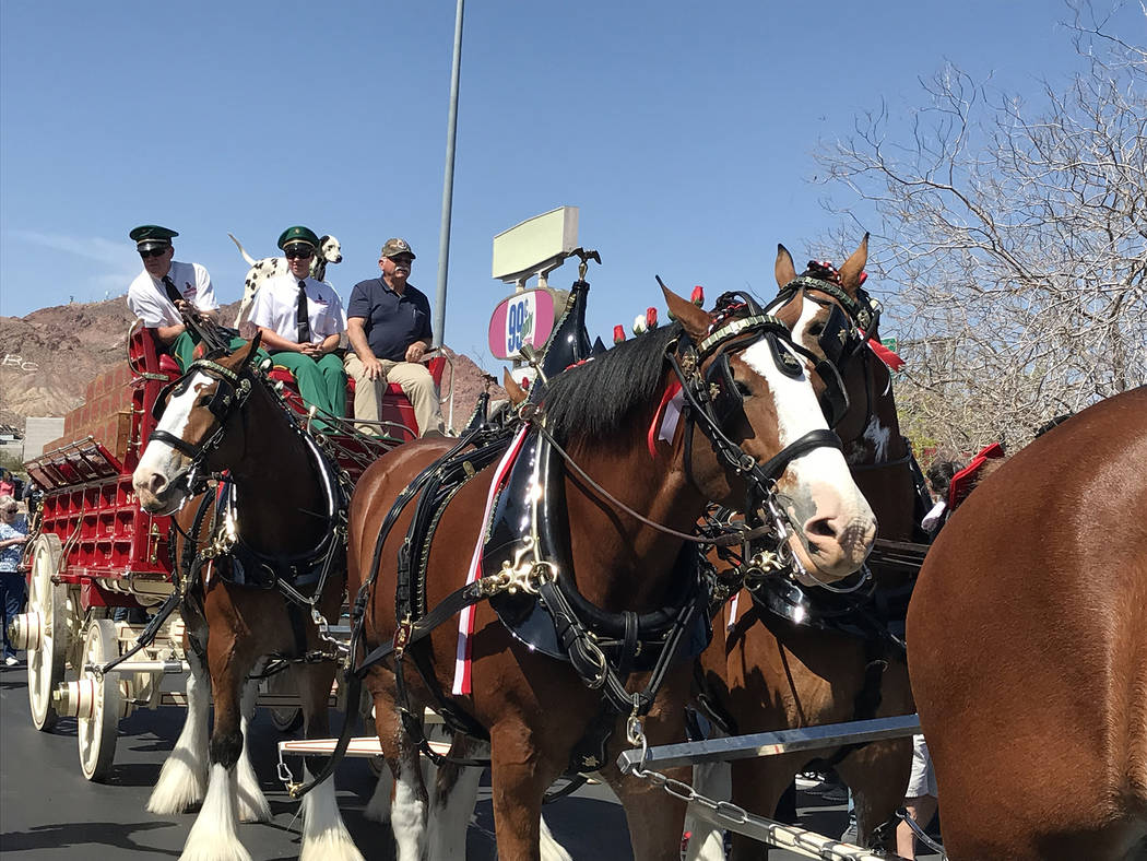 (Hali Bernstein Saylor/Boulder City Review) Anheuser-Busch brought a team of eight Clydesdales ...