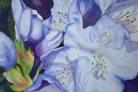 "(Nevada Watercolor Society) Works such as ""Blue Rhododendron"" by Sharon Menary of the Nevada Wa ..."