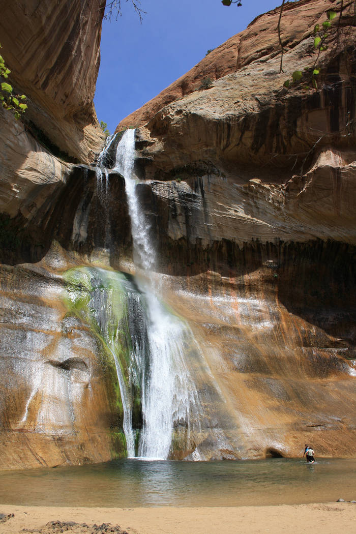(Deborah Wall) Hikers can enjoy wading or swimming in the pool at the base of Lower Calf Creek ...