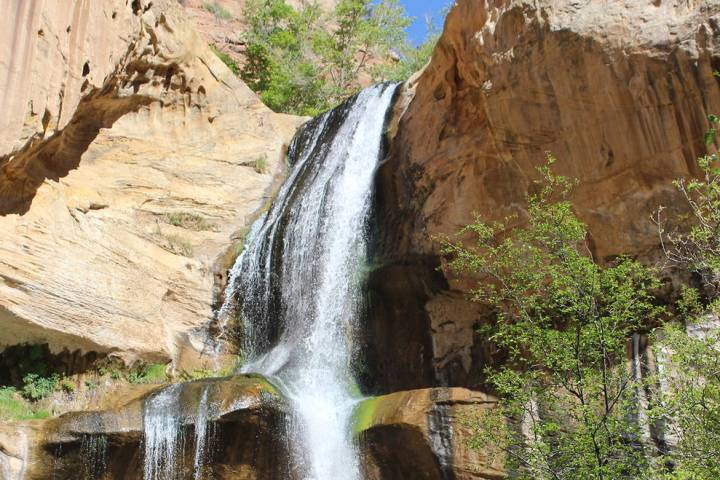 (Deborah Wall) The 126-foot Lower Calf Creek Falls is in Grand Staircase-Escalante National Mon ...