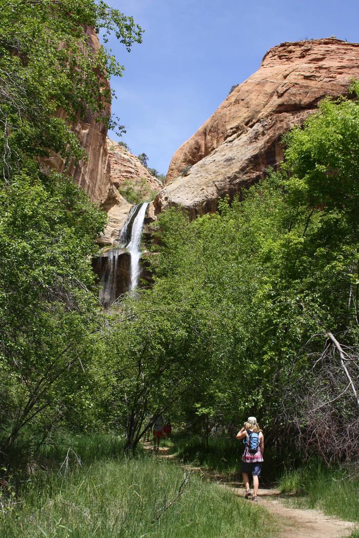 (Deborah Wall) The 126-foot Lower Calf Creek Falls is in Grand Staircase-Escalante National Mon ...