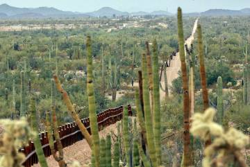 (File) A fence separating Organ Pipe Cactus National Monument, right, and Sonyota, Mexico, is s ...