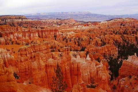 (Deborah Wall) Bryce Canyon National Park in Utah is known for its colorful hoodoos. At night, ...