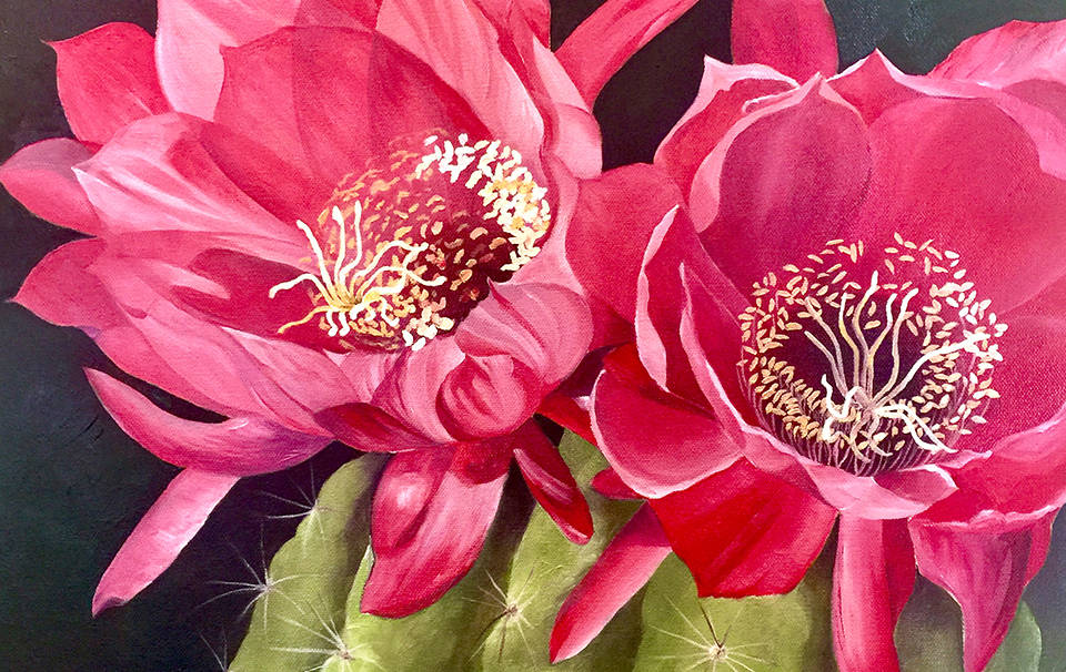 (Boulder City Art Guild) Erynn Knowles, who painted this cactus in bloom, will be among the app ...