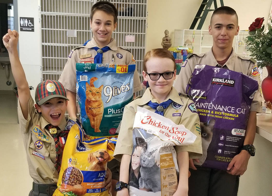 (Celia Shortt Goodyear/Boulder City Review) Boy Scout Ruger Cavasin, in back at right, delivers ...