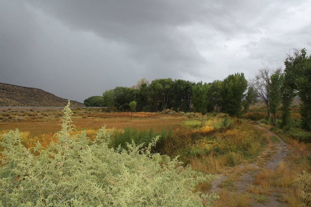 (Deborah Wall) There are more than 9 miles of hiking and mountain bike trails in Pahranagat Nat ...