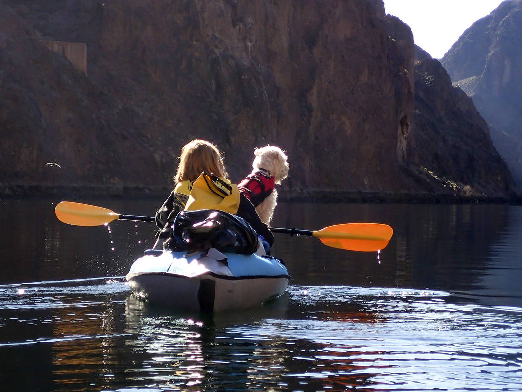 (Lake Mead National Recreation Area) Lori Curry and her dog, Creena, kayak down the Colorado Ri ...