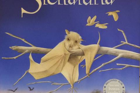 """Stellaluna,"" a story about young bat who becomes separated from her mother and is adopted ..."