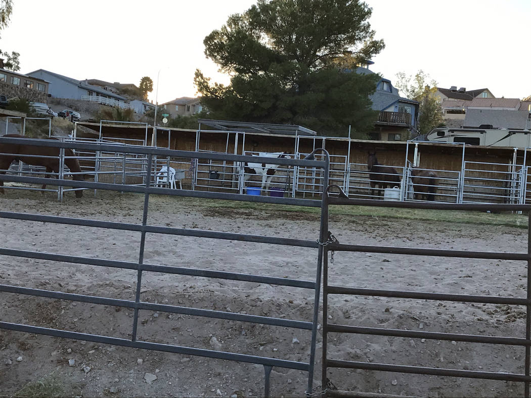 (Hali Bernstein Saylor/Boulder City Review) Several horses can been seen in their pens at the B ...