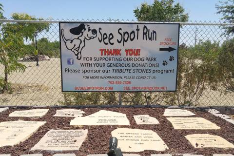 See Spot Run is selling a 2020 calendar to help raise funds to support its dog park at Veterans ...
