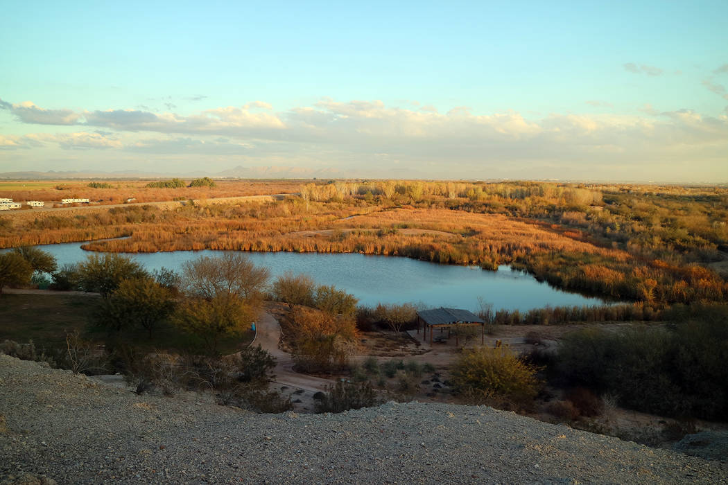 (Deborah Wall) The Yuma East Wetlands in Arizona offers a natural habitat for birds and wildlif ...