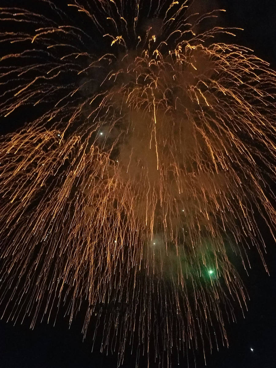 The annual fireworks show at Veterans' Memorial Park has been canceled by the Damboree Committee.