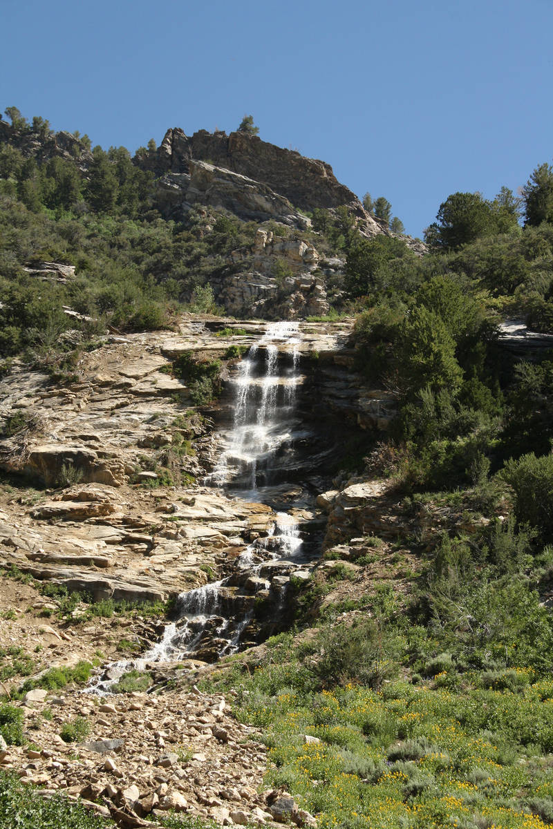 (Deborah Wall) Cascades and waterfalls can be seen throughout the 12-mile Lamoille Canyon Natio ...