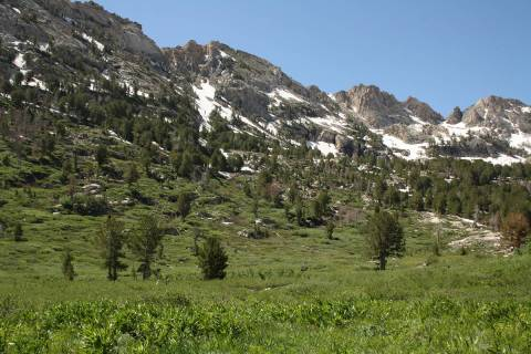 (Deborah Wall) The Ruby Mountains Ranger District in Northern Nevada encompasses 450,000 acres ...