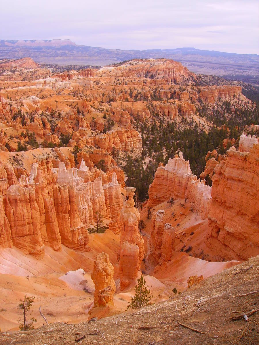 (Deborah Wal) While it's called Bryce Canyon, the Utah park is made up of about one dozen nat ...