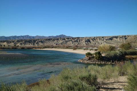 (Deborah Wall) Along the shore at Big Bend of the Colorado State Recreation Area there is a boa ...