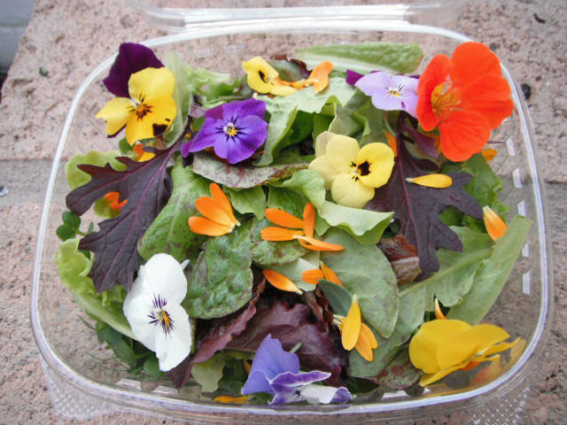 (Herbs by Diane) A salad mix featuring greens and edible flowers is among the items offered by ...