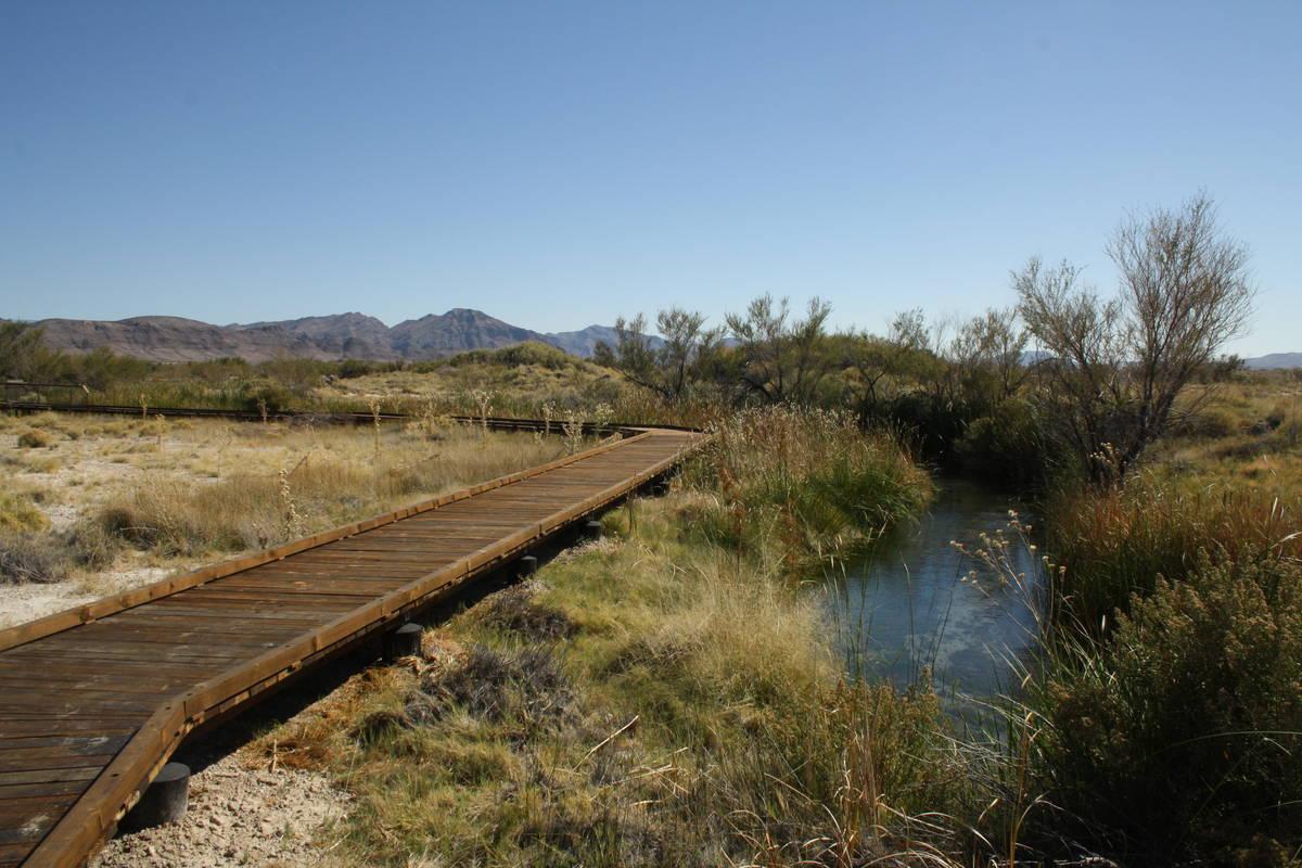 (Deborah Wall) The boardwalk along the Crystal Spring Trail keeps visitors off the wetlands.