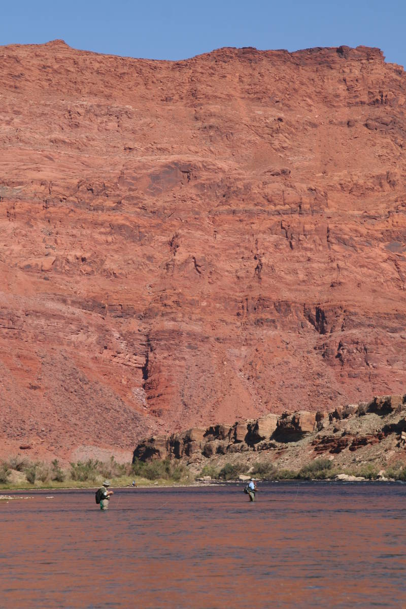 (Deborah Wall) Fly-fishing is a popular activity at Lees Ferry, Arizona.