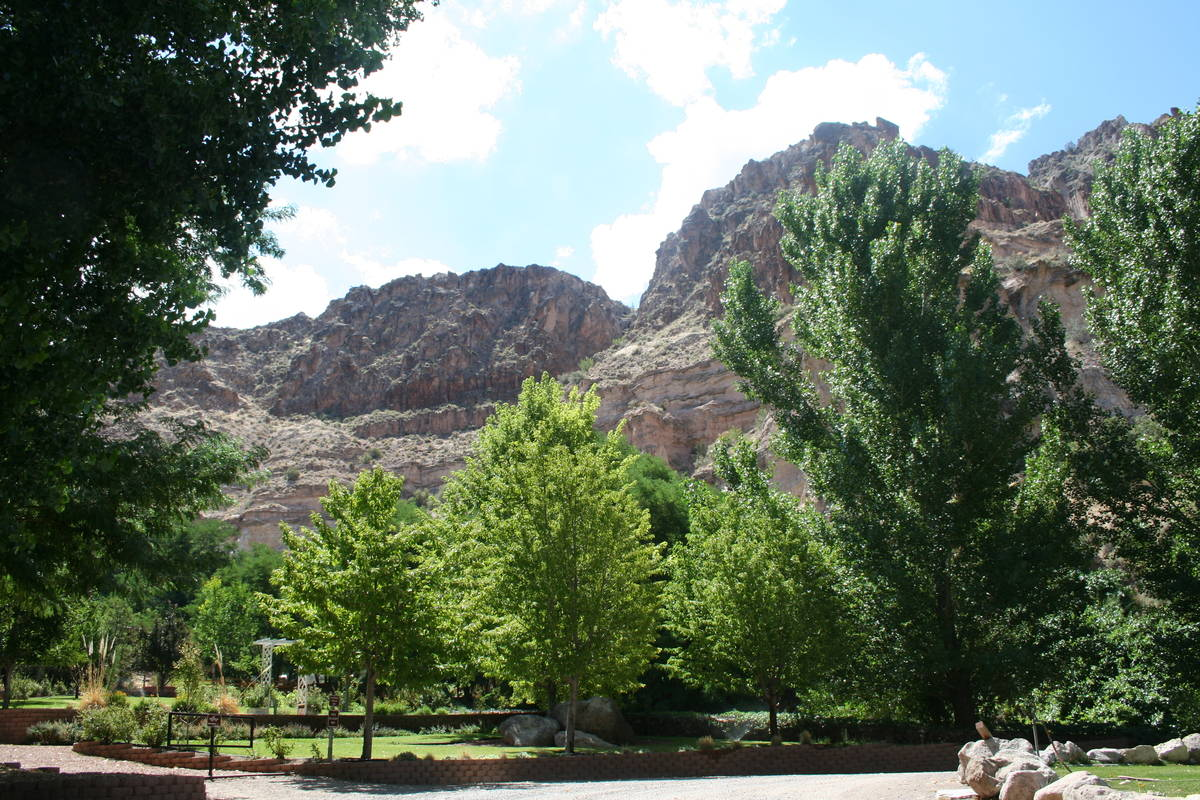 (Deborah Wall) Kershaw-Ryan State Park in Lincoln County has four natural plant communities: de ...