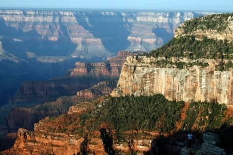 (Olivia Wall) The North Rim of the Grand Canyon has cooler temperatures and more precipitation ...