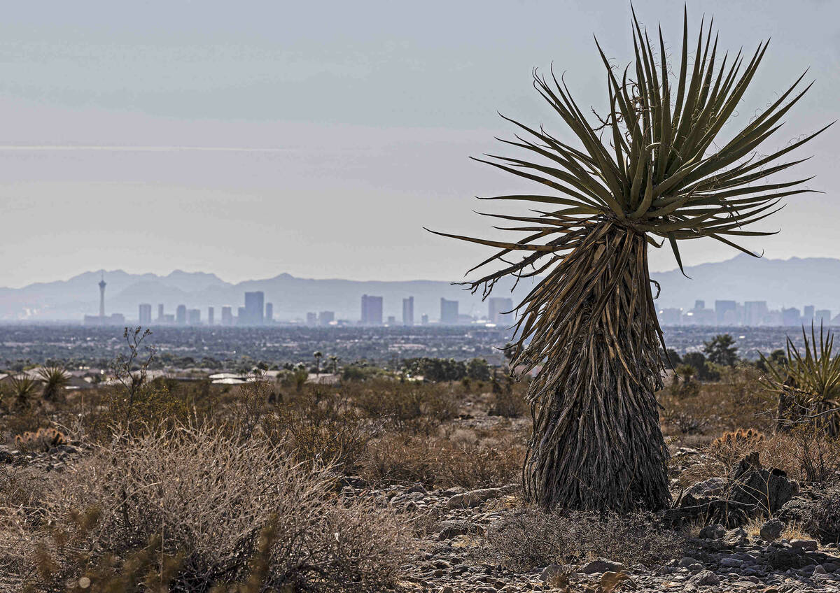 (Benjamin Hager/Special to the Boulder City Review) The Las Vegas skyline is seen from a dry, v ...